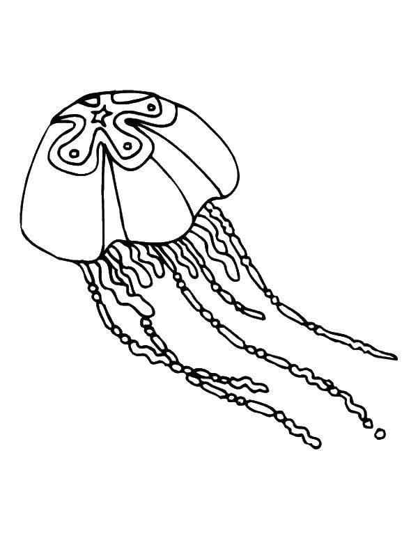ещё раскраска медузы под водой зима