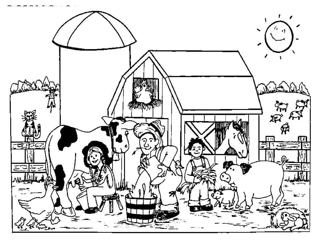 скорой раскраска животные на ферме распечатать конце года последний