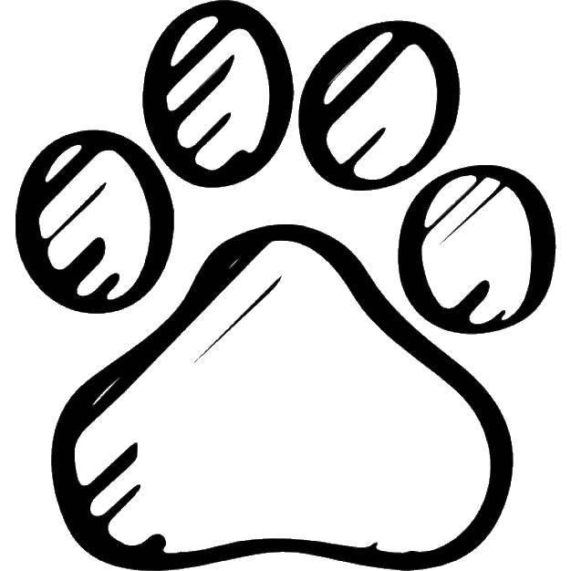 Картинка следы животных раскраска