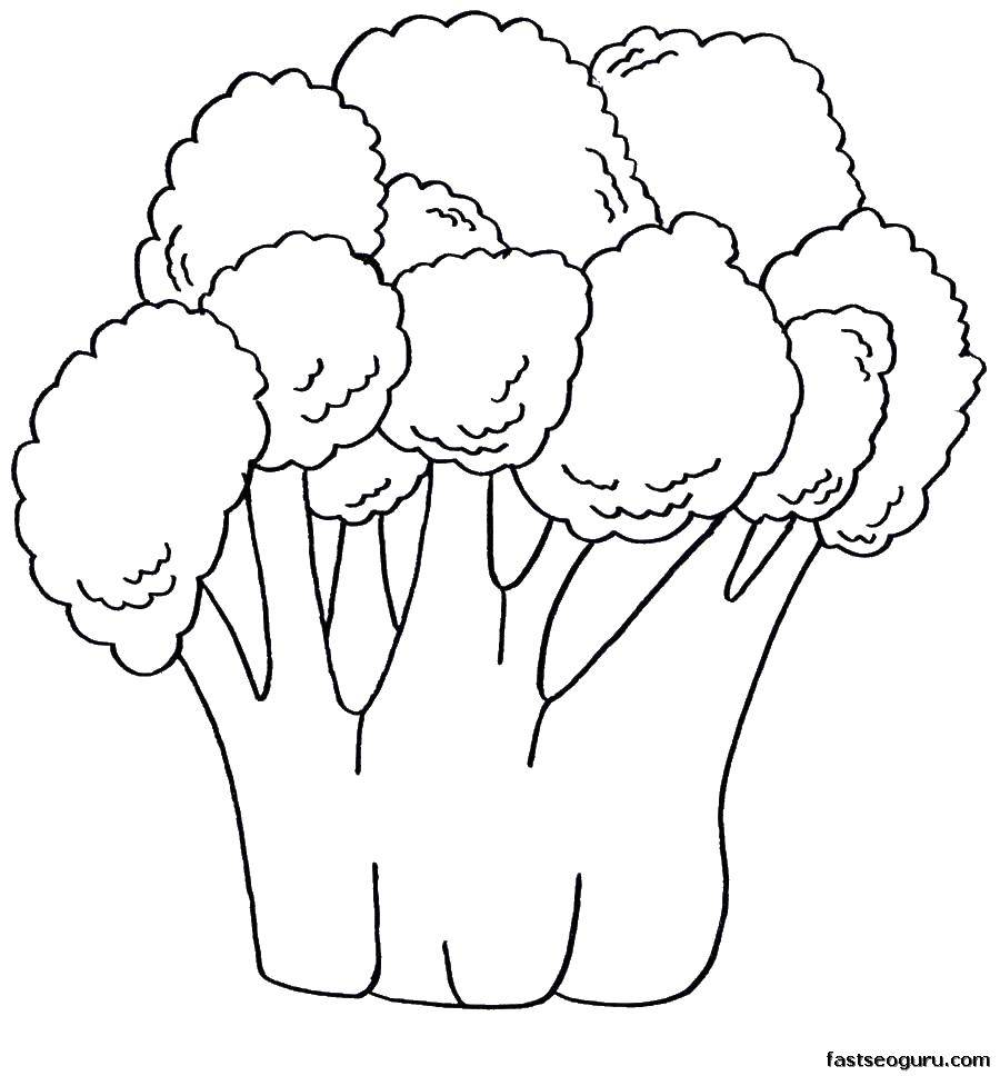 Coloring sheet vegetables Download Charlotte, strawberry.  Print ,cartoons,