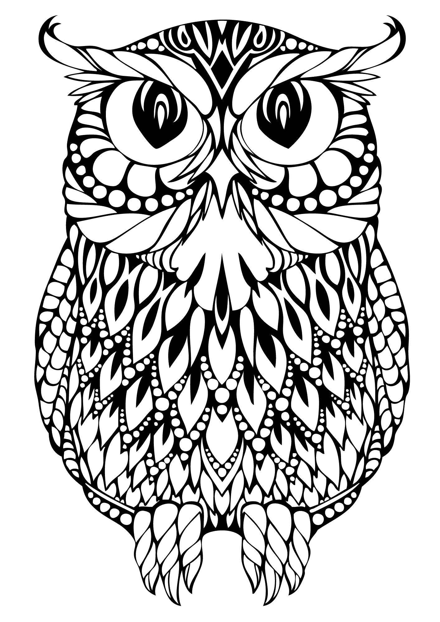 русские раскраска филин сова важнейший элемент