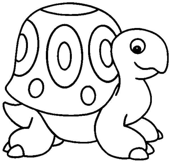 Coloring sheet turtle Download cartoons, children.  Print ,Fairy cartoons, movies,