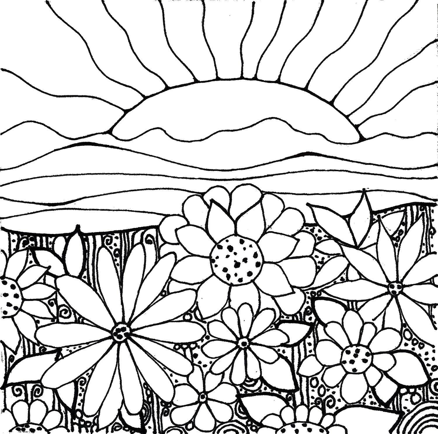 Coloring Sunrise over flowers Download ,Sun, rays, joy,.  Print