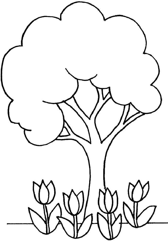Coloring The crown above the tulips. Category tree. Tags:  Trees, leaf.