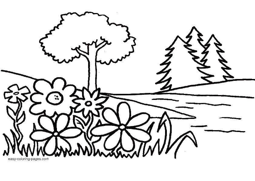 Coloring The natural landscape. Category coloring. Tags:  Nature, forest, mountains, trees.