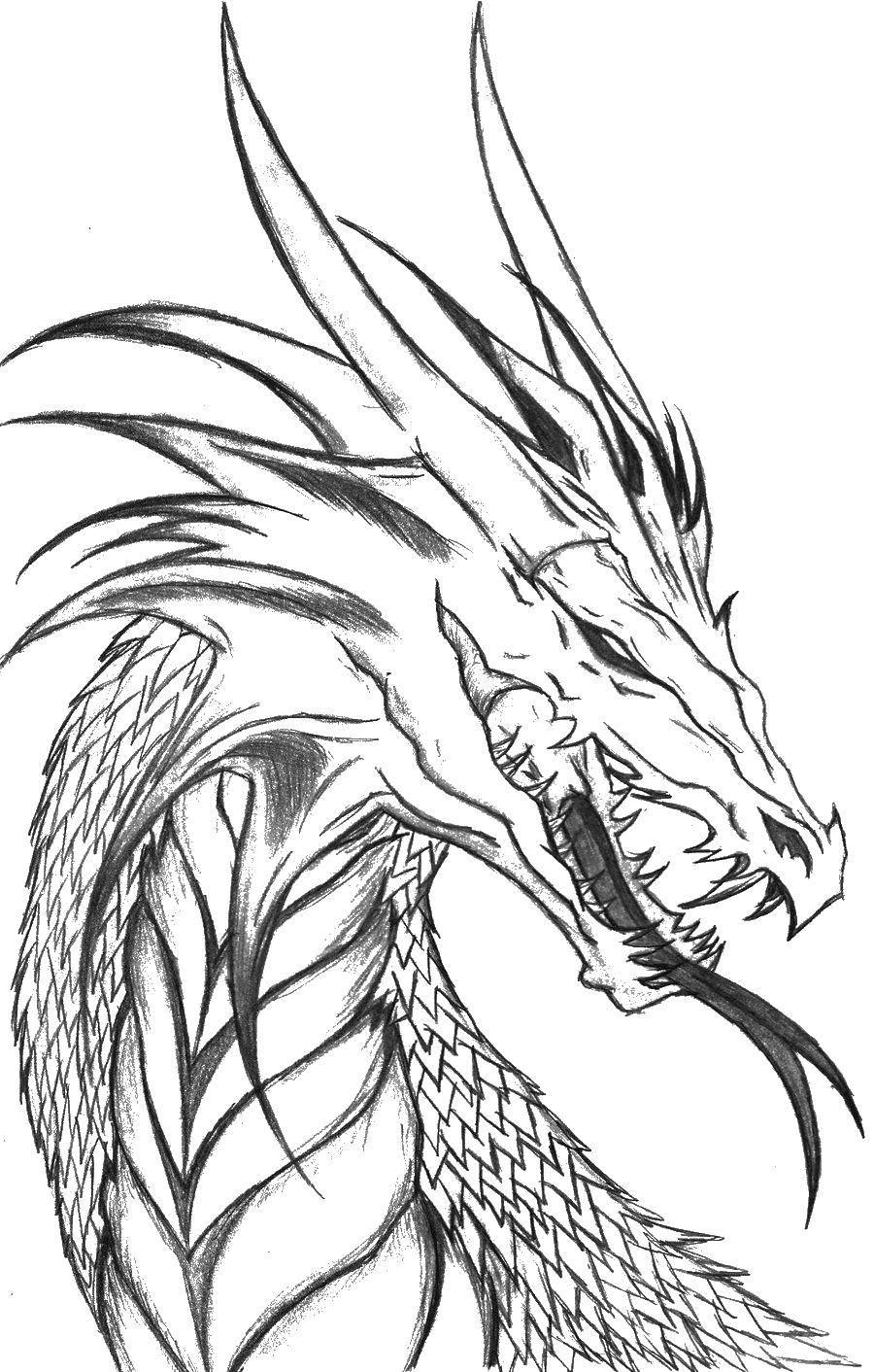 Раскраска Голова дракона Скачать ,драконы, дракон, язык,.  Распечатать