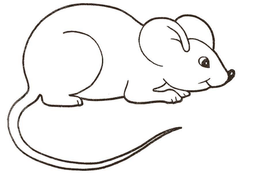 Раскраска Рисунок мышки Скачать ,мышка,.  Распечатать
