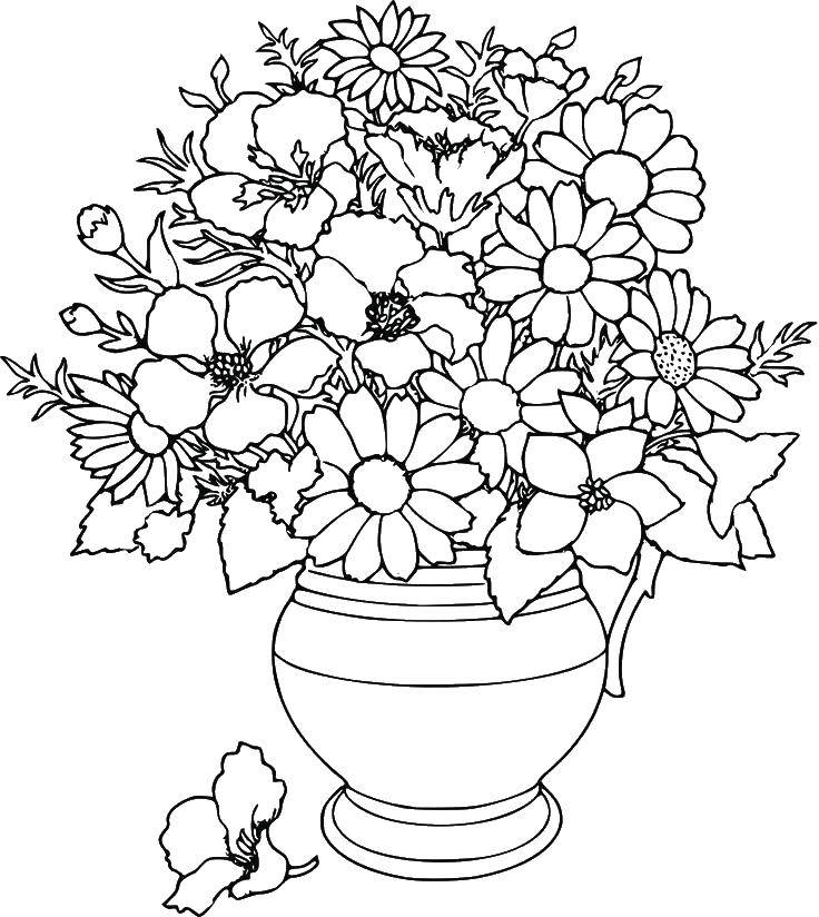 Coloring sheet Vase Download .  Print