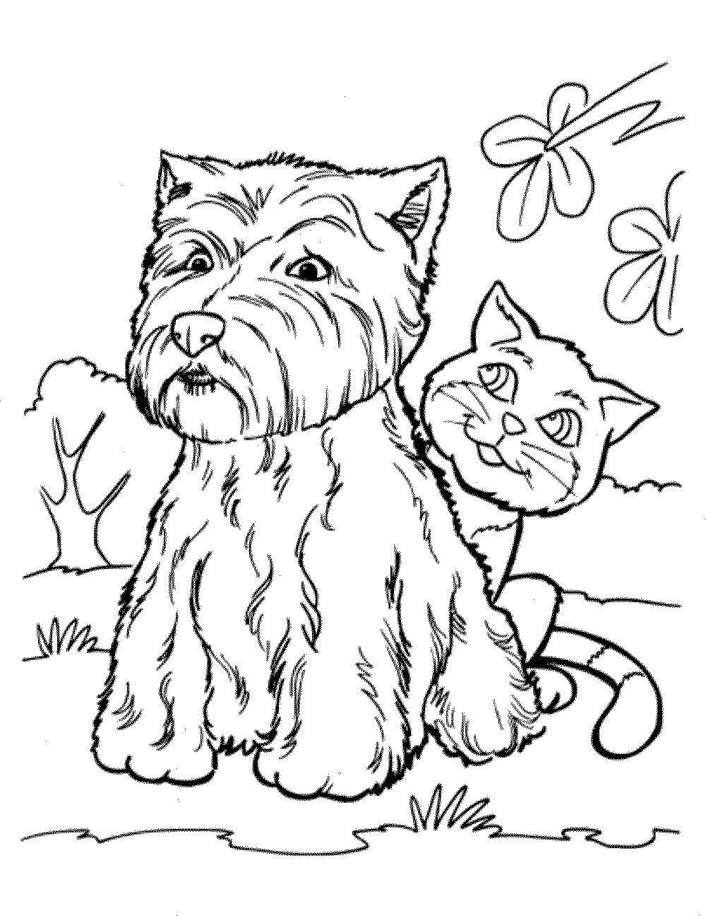 Раскраски Раскраска Длинношерстый пес домашние животные ...