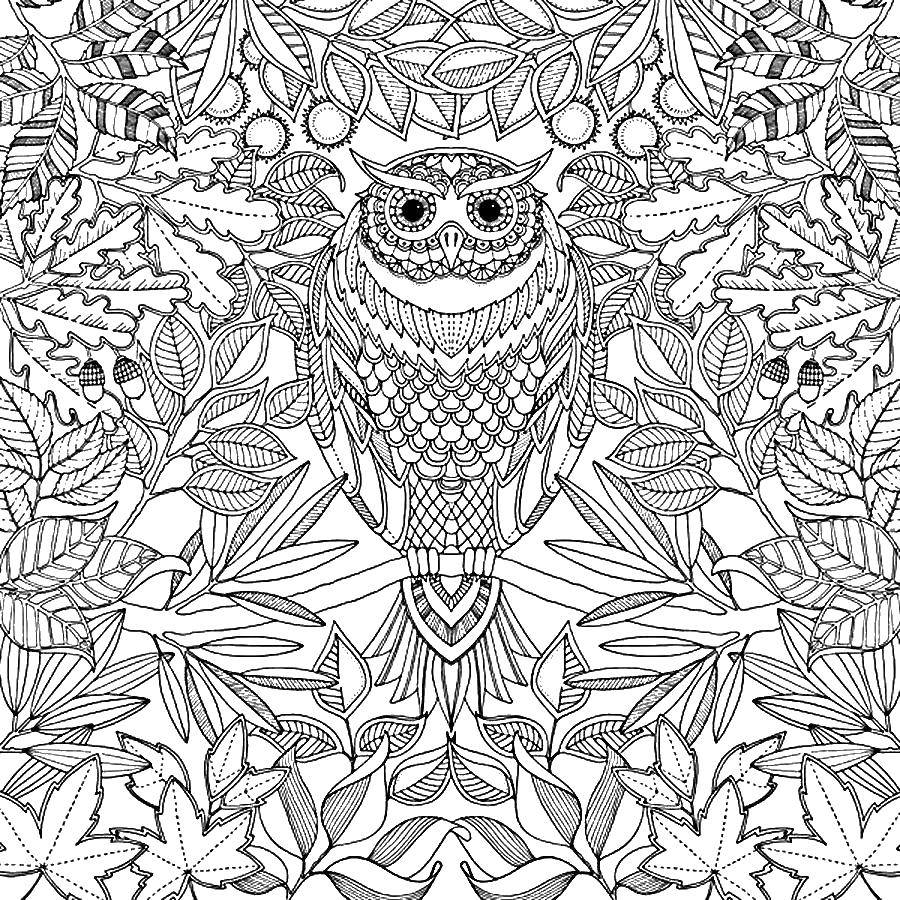 Coloring sheet coloring antistress Download Bathroom with shower,.  Print