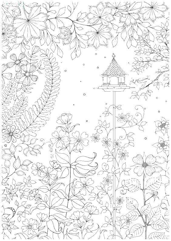 Coloring sheet coloring antistress Download Disney, Cinderella.  Print ,Cinderella and the Prince,