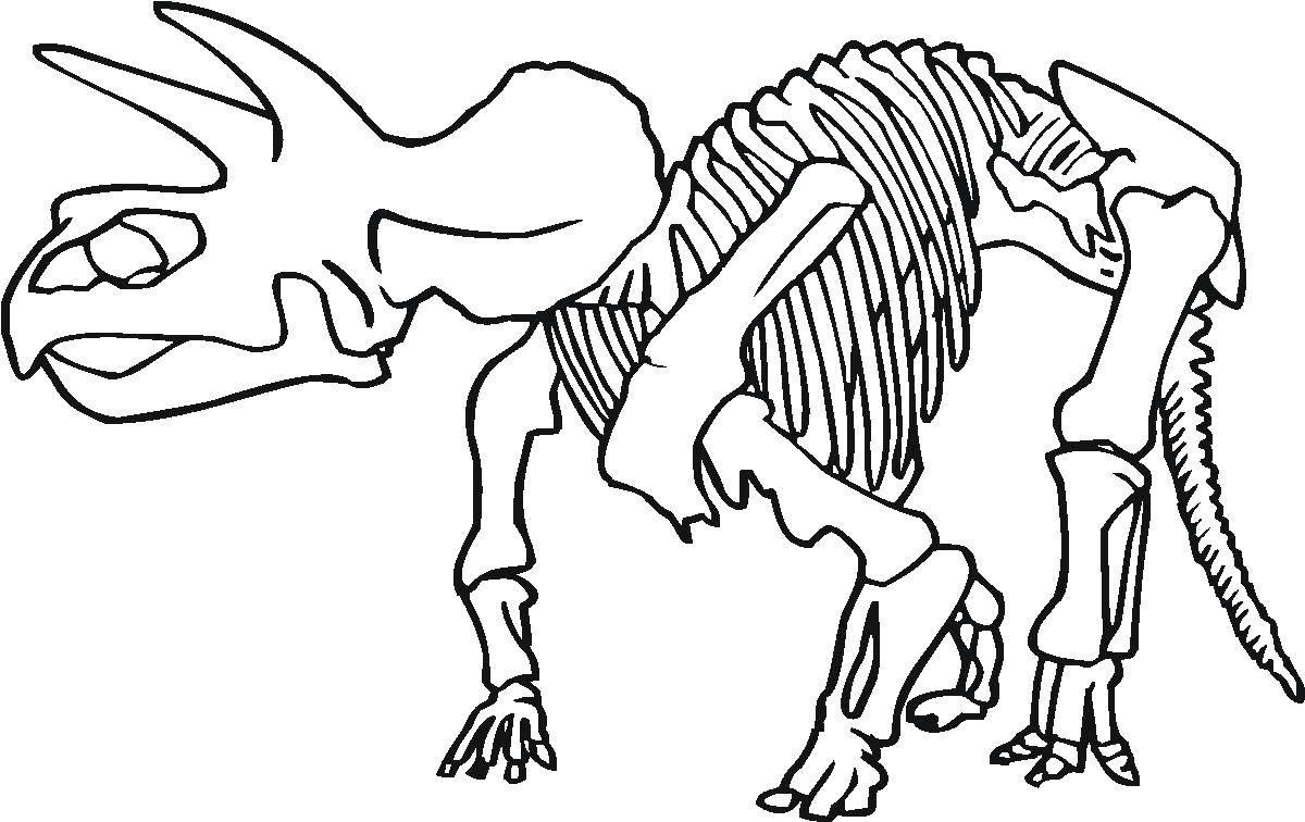 динозавры скелеты раскраски распечатать смете являются фиксированными