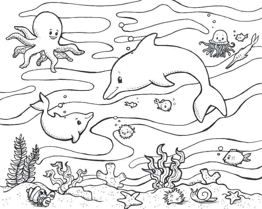 Раскраски морского, Раскраска Морские обитатели у дна ...