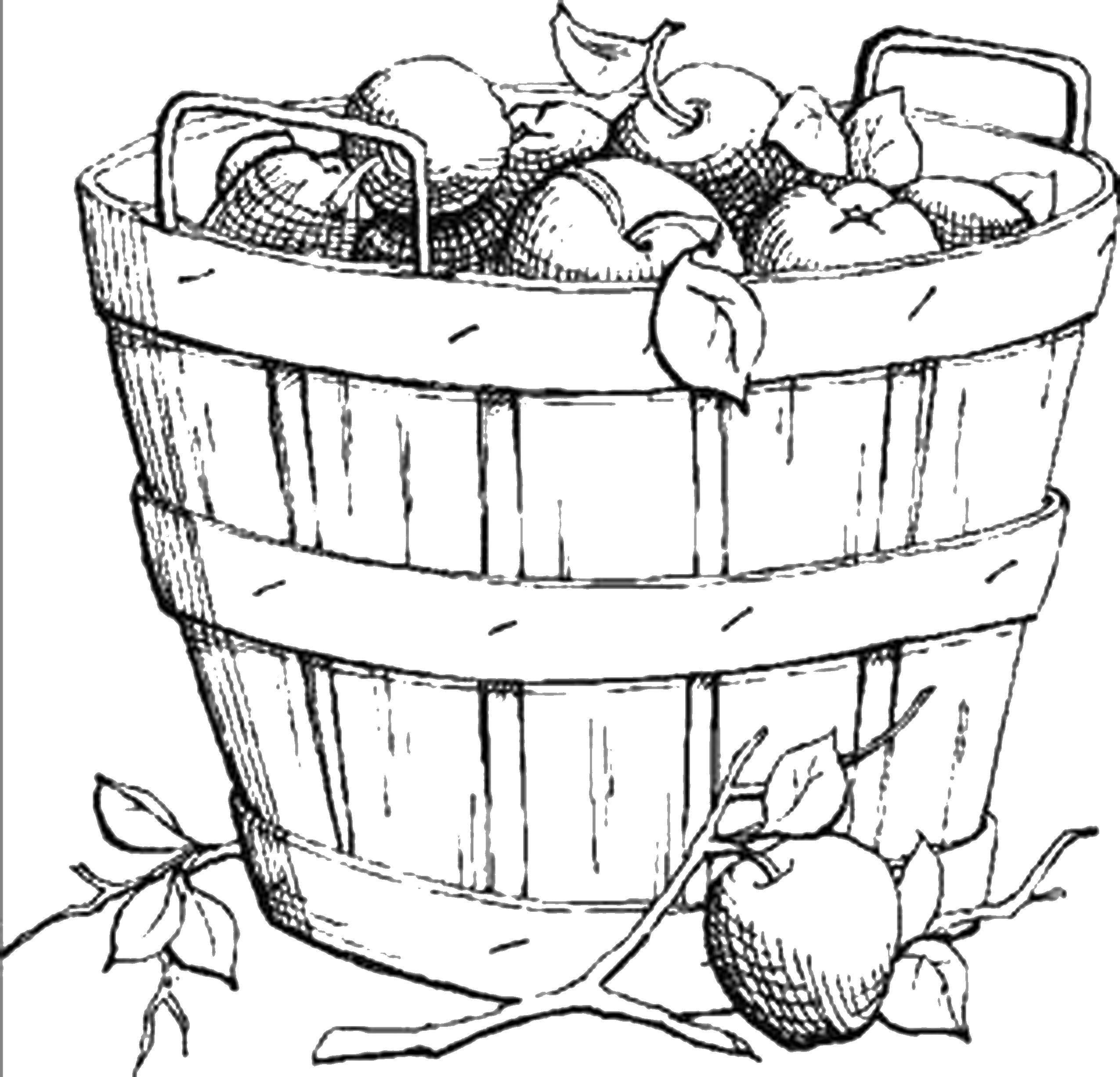 корзина с фруктами картинка для раскрашивания локально