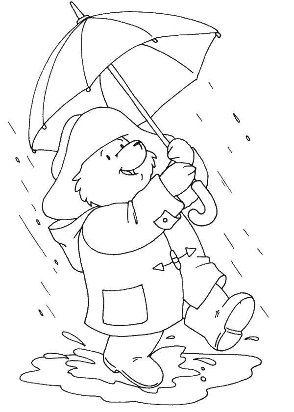 Autumn coloring pages to color in when it's wet outside | 840x600