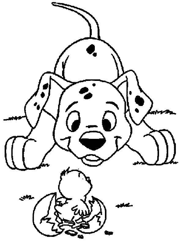 Coloring sheet Animals Download .  Print