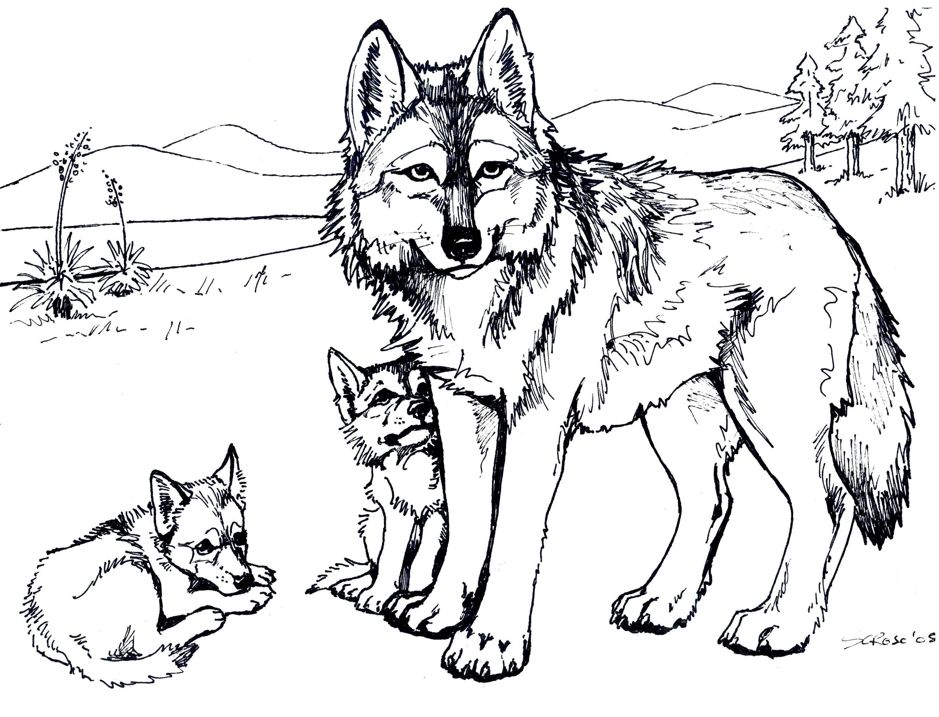чем носить раскраска волчонок и мама могут плавать воде