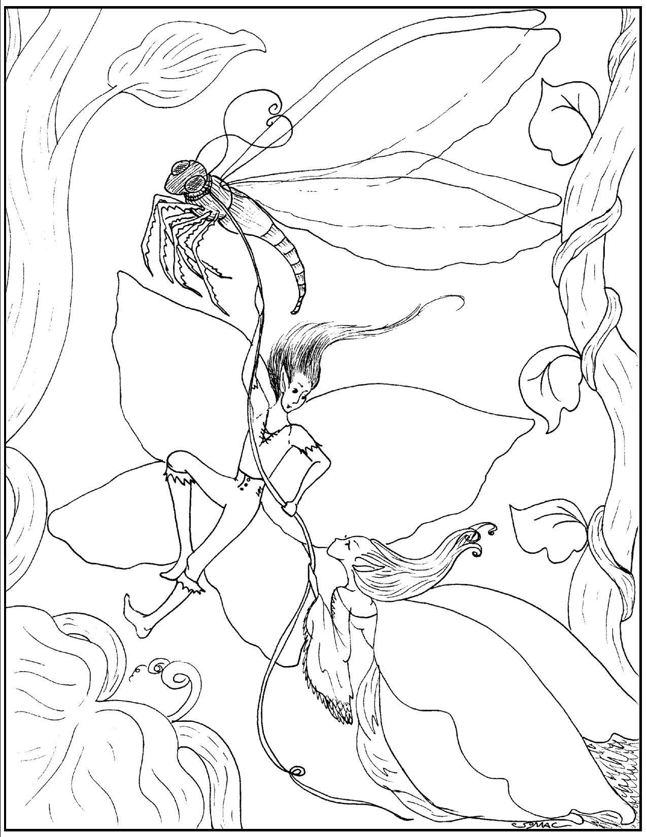 Coloring pages Elves Скачать .  Распечатать