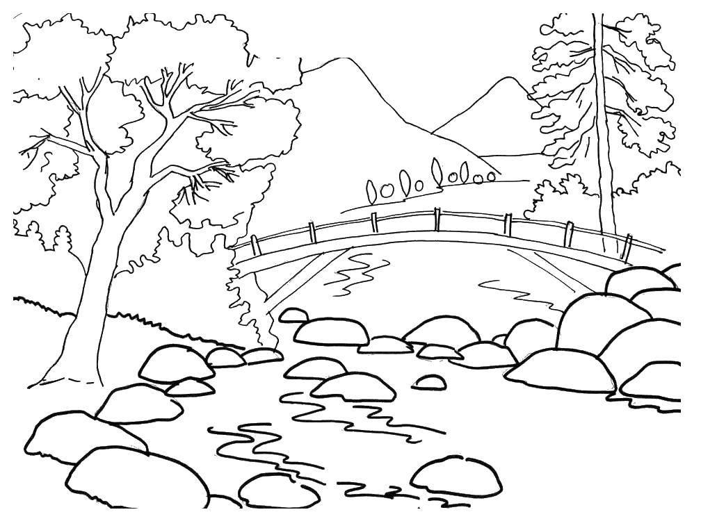 Coloring Bridge and pond Download bridge, pond, stones, trees,.  Print