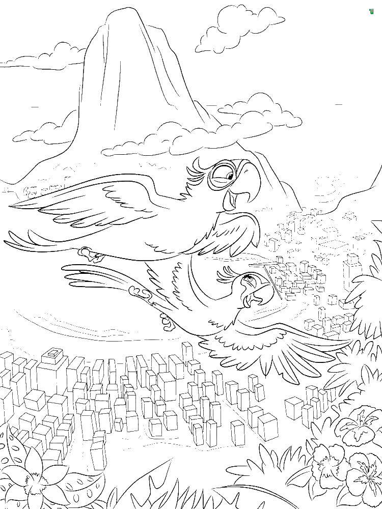 Online Coloring Pages Flying Coloring Page Blu And Jewel Flying Over Rio Rio