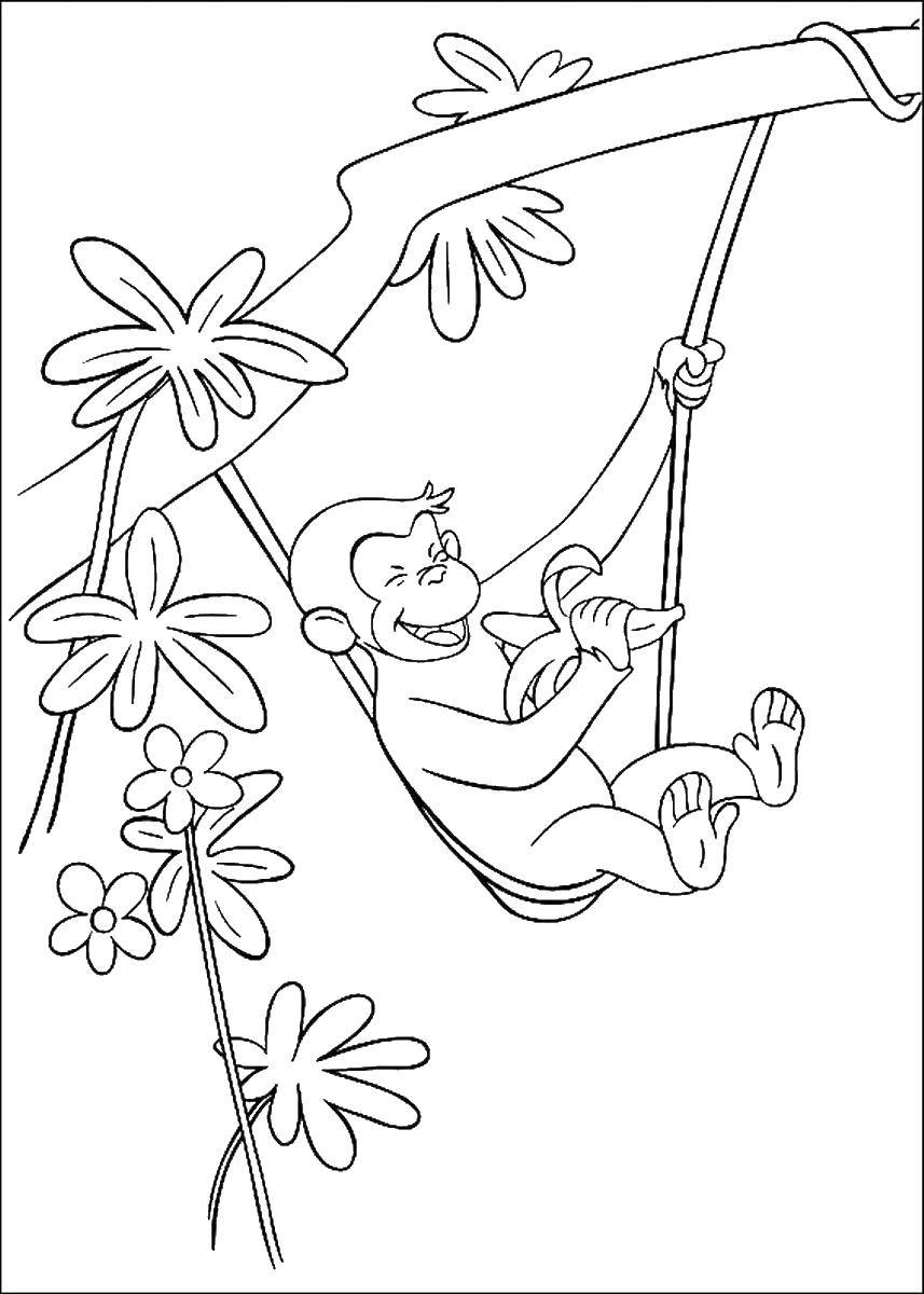 Coloring Happy monkey banana Download ,Cartoon character,.  Print
