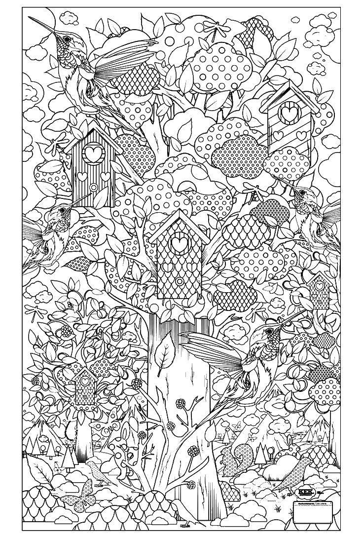 Раскраски Раскраска Цветы узоры раскраски антистресс ...