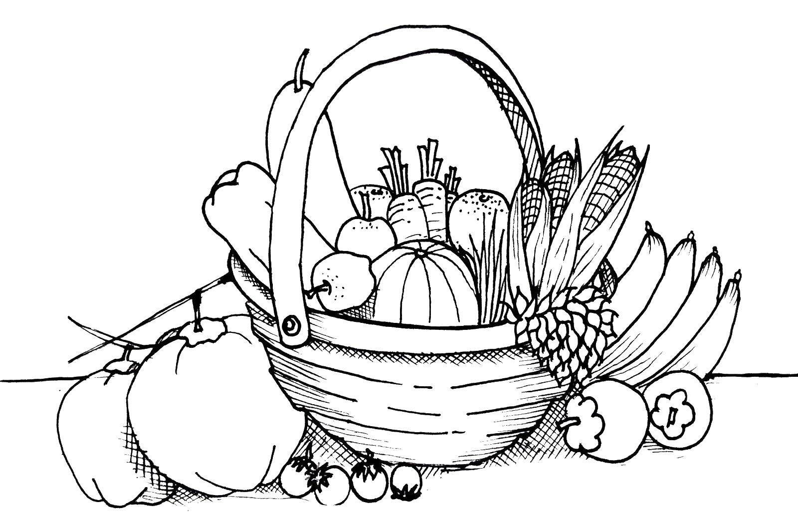 Online Coloring Pages Coloring Page Fruit Basket Fruit Download Print Coloring Page