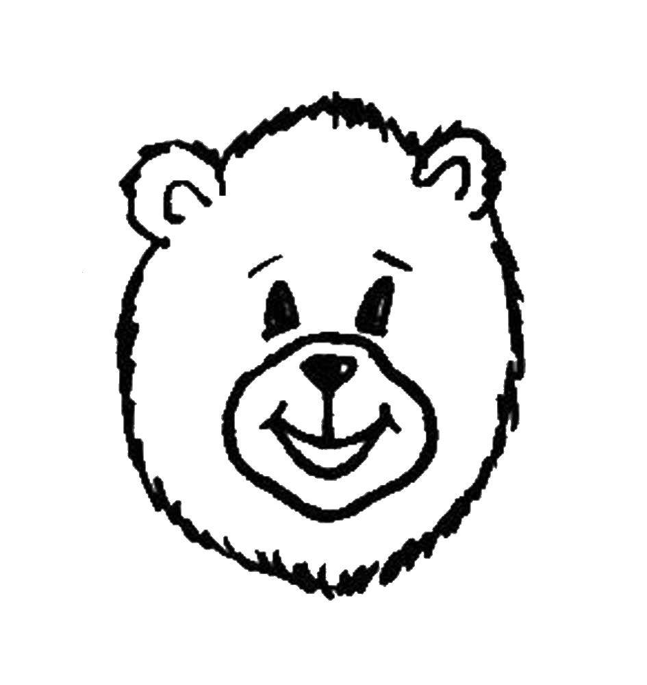 Раскраска медведь Скачать медведь, мишки.  Распечатать