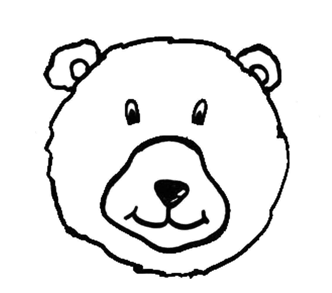 Раскраска медведь Скачать ,медведь, мишки,.  Распечатать