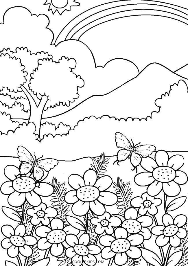 распечатать картинки раскраски природа написания