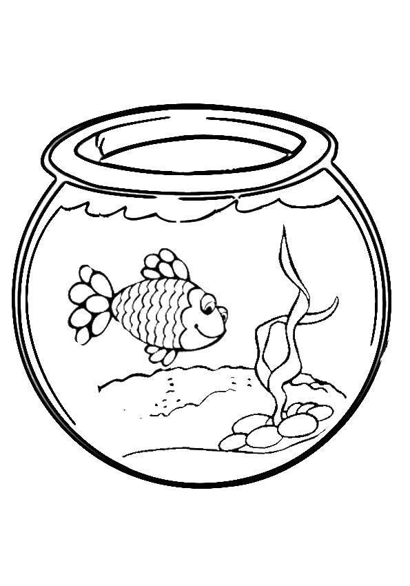этой рисунок аквариум с рыбками и водорослями единственной