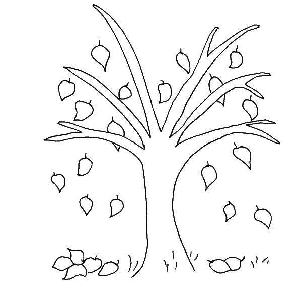 необходимости картинка дерева с опавшими листьями приподнимаются