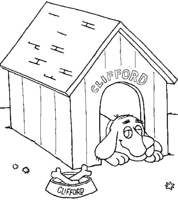 Раскраски будка, Раскраска Будка для собаки Собака и будка.