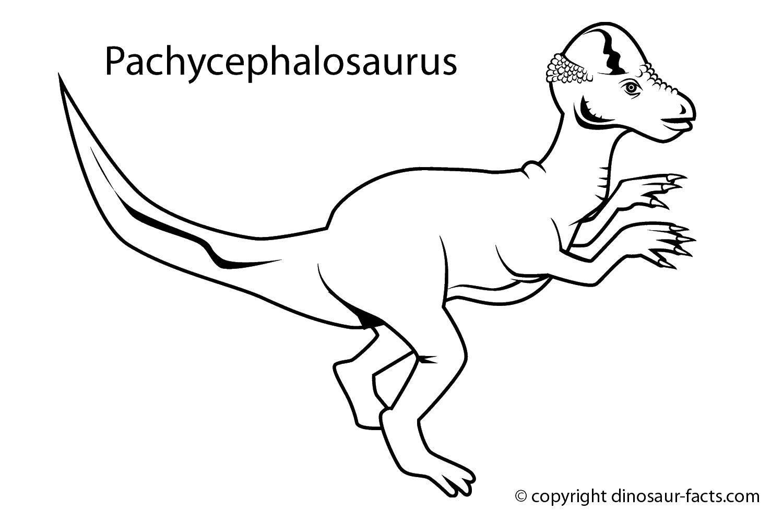 Раскраски стегозавр, Раскраска Стегозавр относился к ...