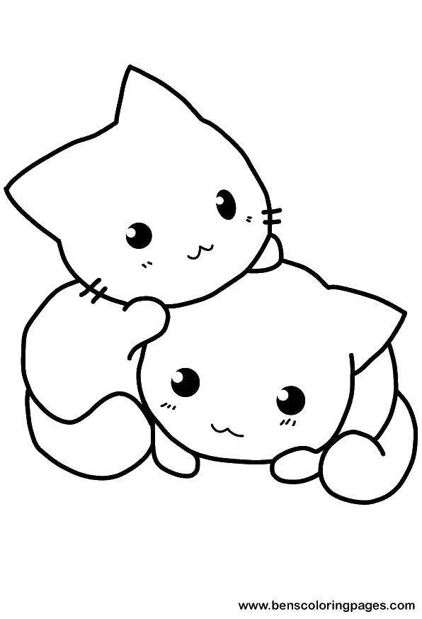 Раскраски котят, Раскраска Милый котенок Коты и котята.