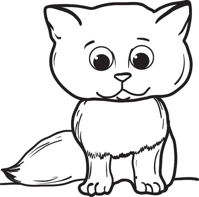 Картинка кот схематично