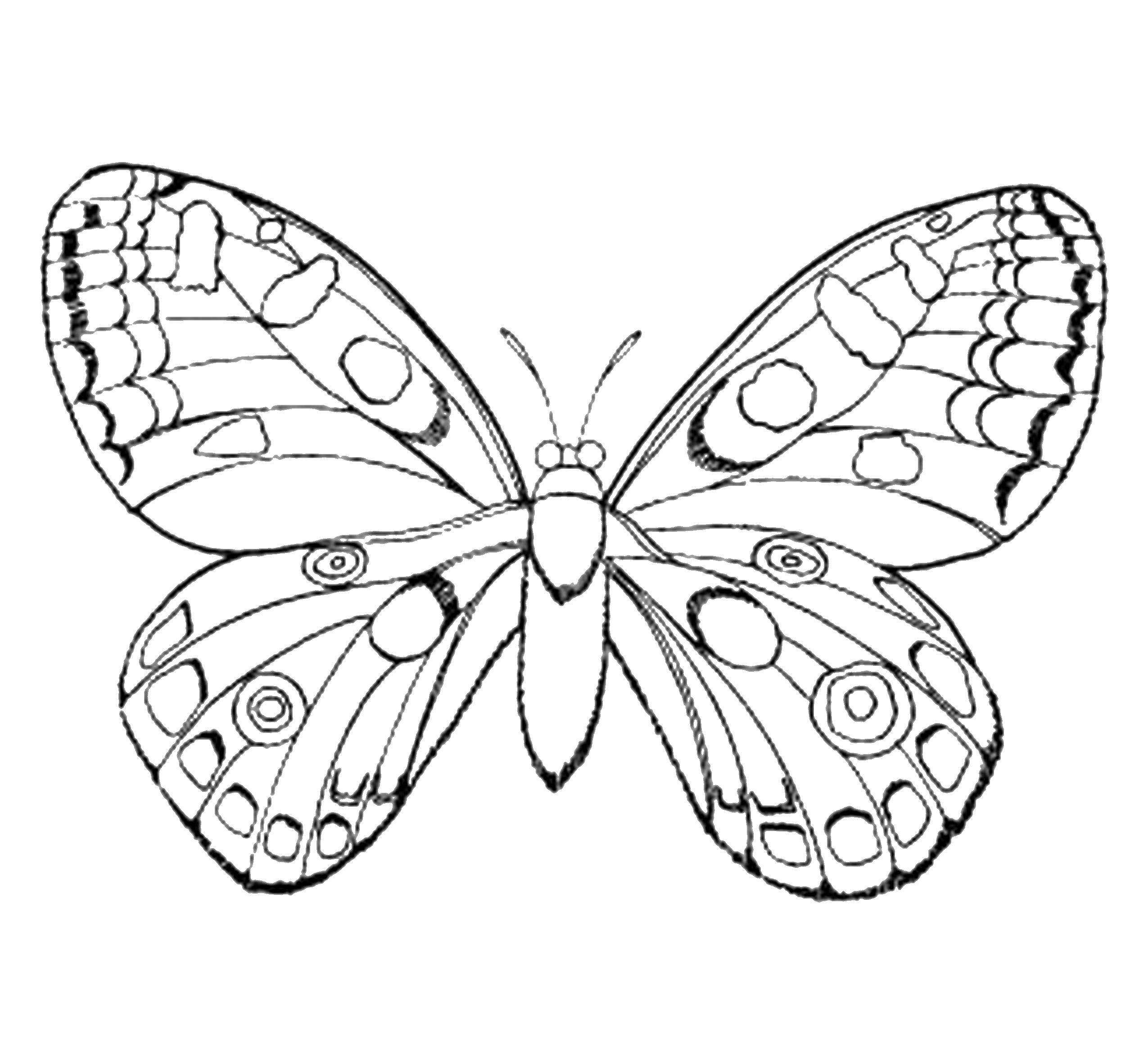 Coloring sheet butterfly Download technique, robot.  Print ,Technique,