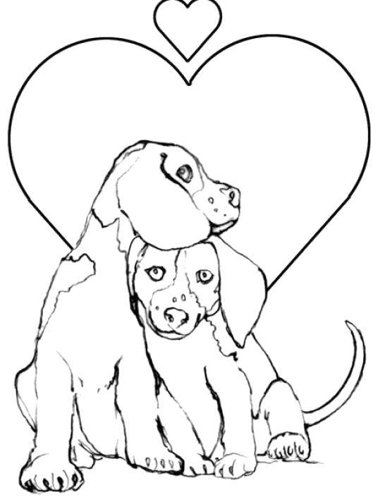 Coloring The love of two dogs Download Animals, dog.  Print ,Pets allowed,