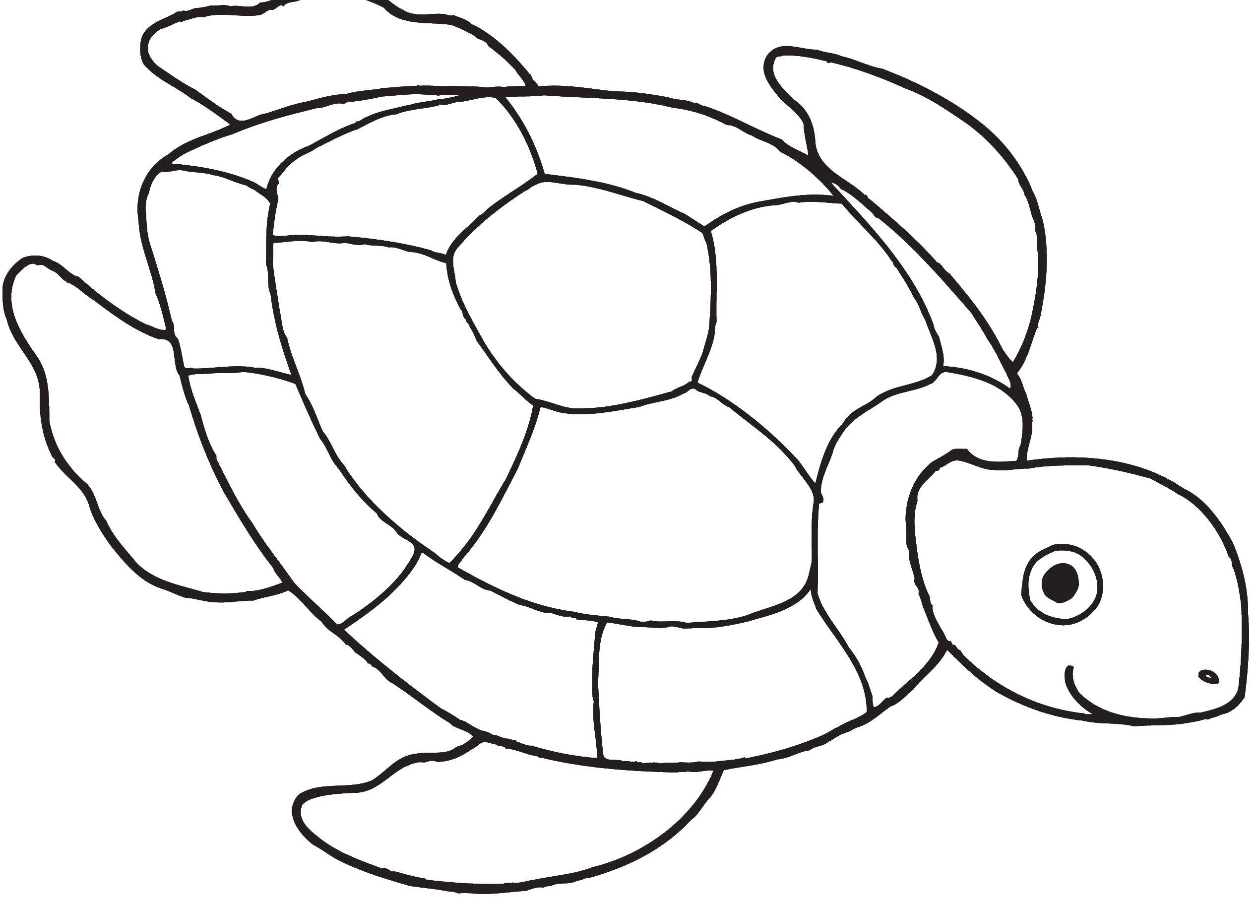 Coloring sheet teenage mutant ninja turtles Download .  Print