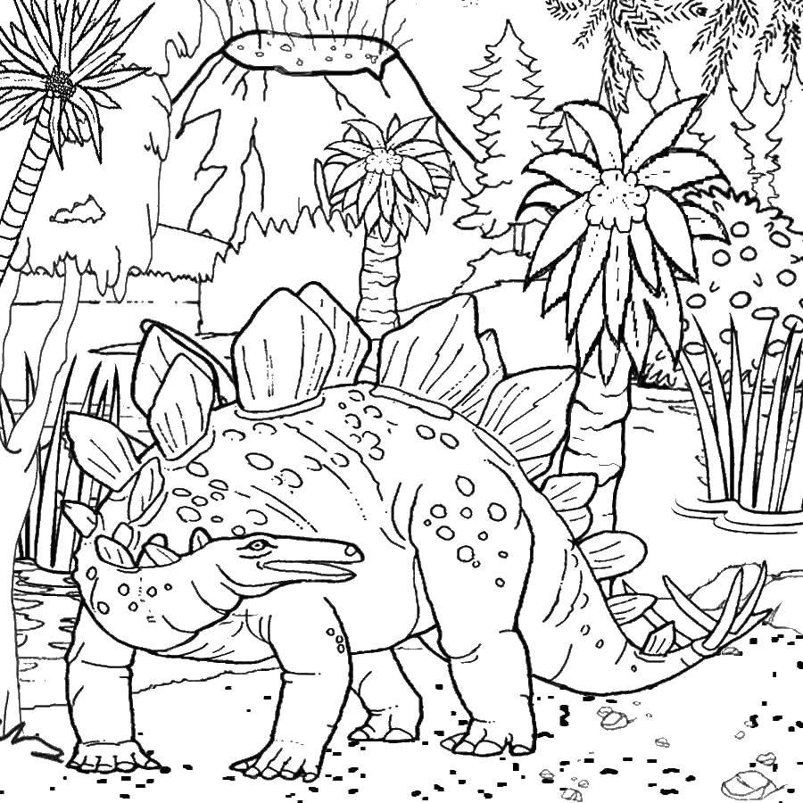 Coloring sheet The volcano Download .  Print