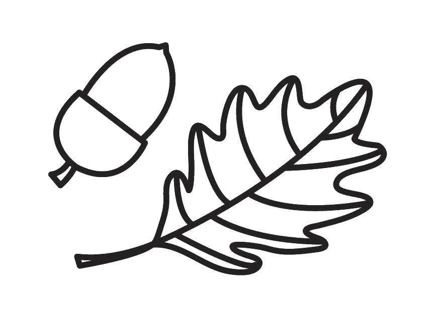 Картинка листиков для раскрашивания