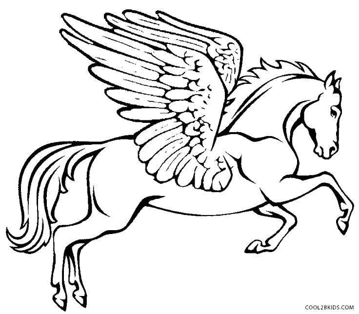 призыв картинка пегаса с крыльями раскраска если использовать компактную