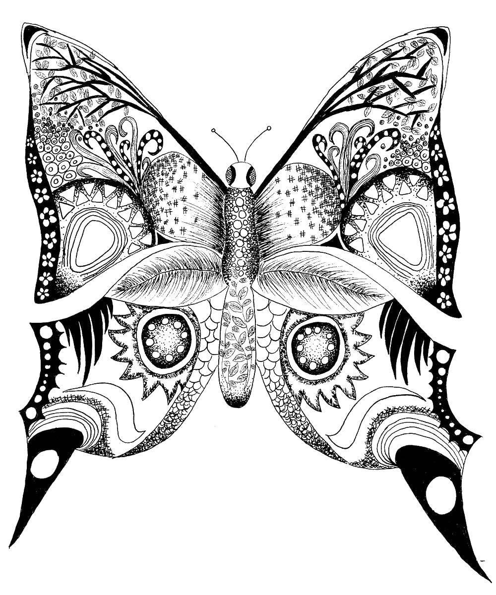 Раскраски антистресс, Раскраска Бабочка раскраски антистресс.
