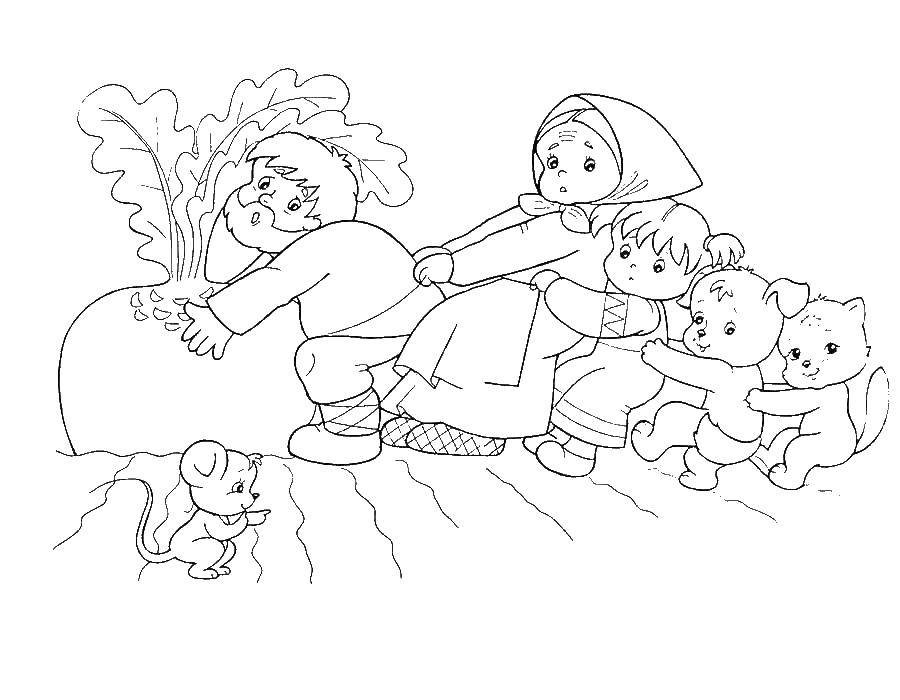 Раскраска Сказка про репку Скачать ,репка, дед, внучка,.  Распечатать