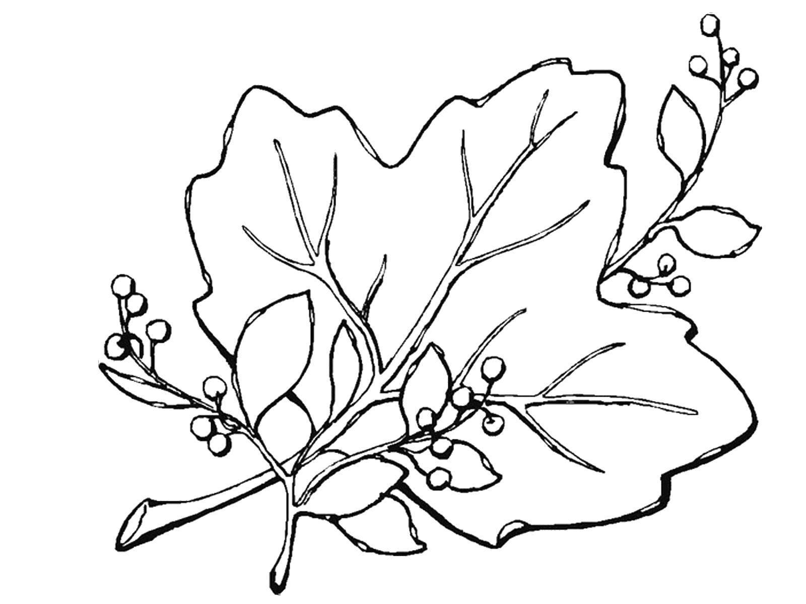 этой картинка букет осенних листьев раскраски стежками