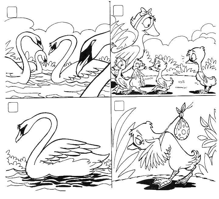 Coloring The ugly duckling became a beautiful Swan. Category Fairy tales. Tags:  ugly duckling, Swan.