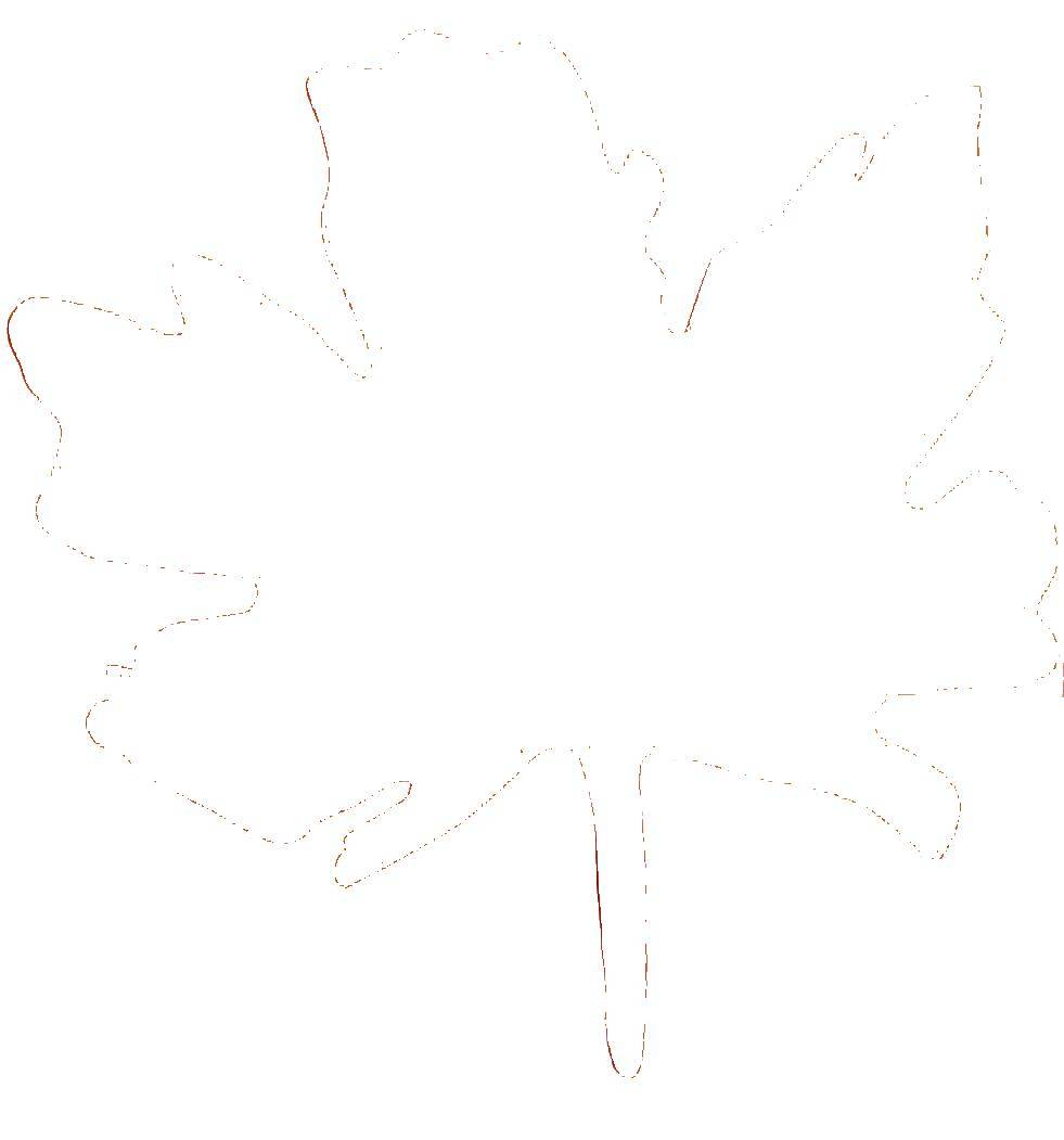 Coloring Maple leaf. Category The contours of the leaves. Tags:  leaf.