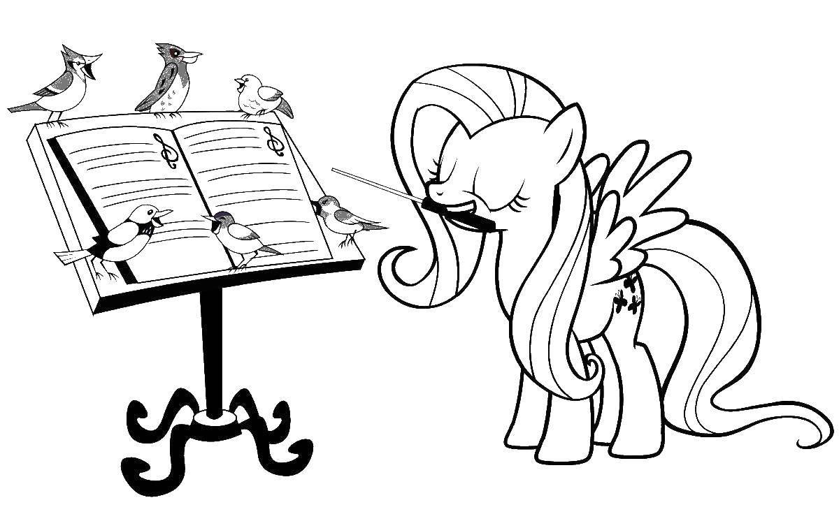 Раскраски пони, Раскраска Флаттершай с птичками мой ...