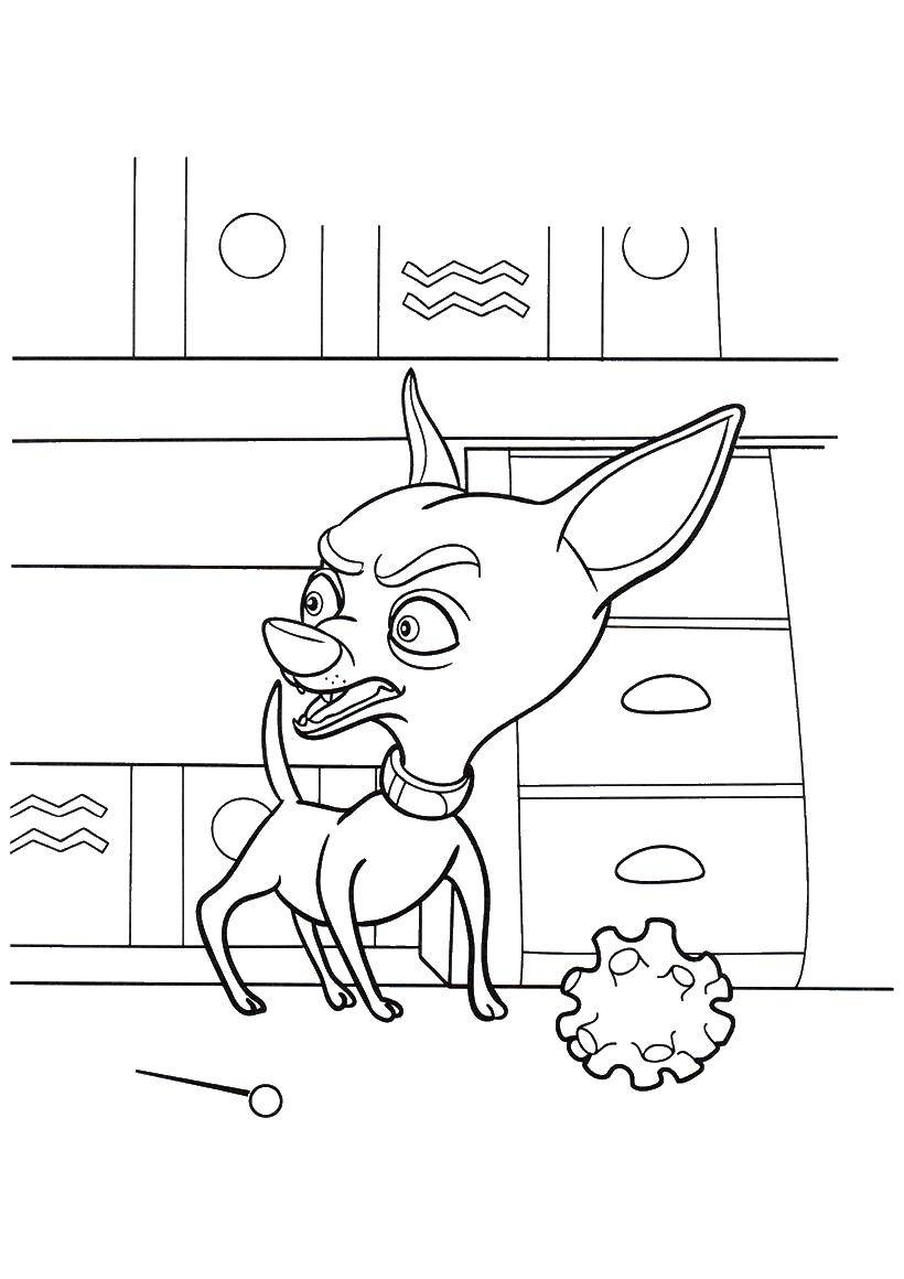 Coloring sheet fixies Download Autumn, leaves.  Print ,autumn,
