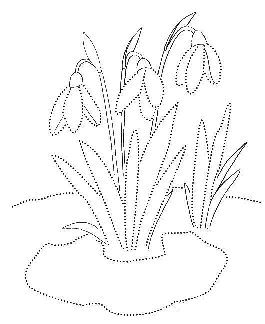 Coloring pages spring Скачать .  Распечатать